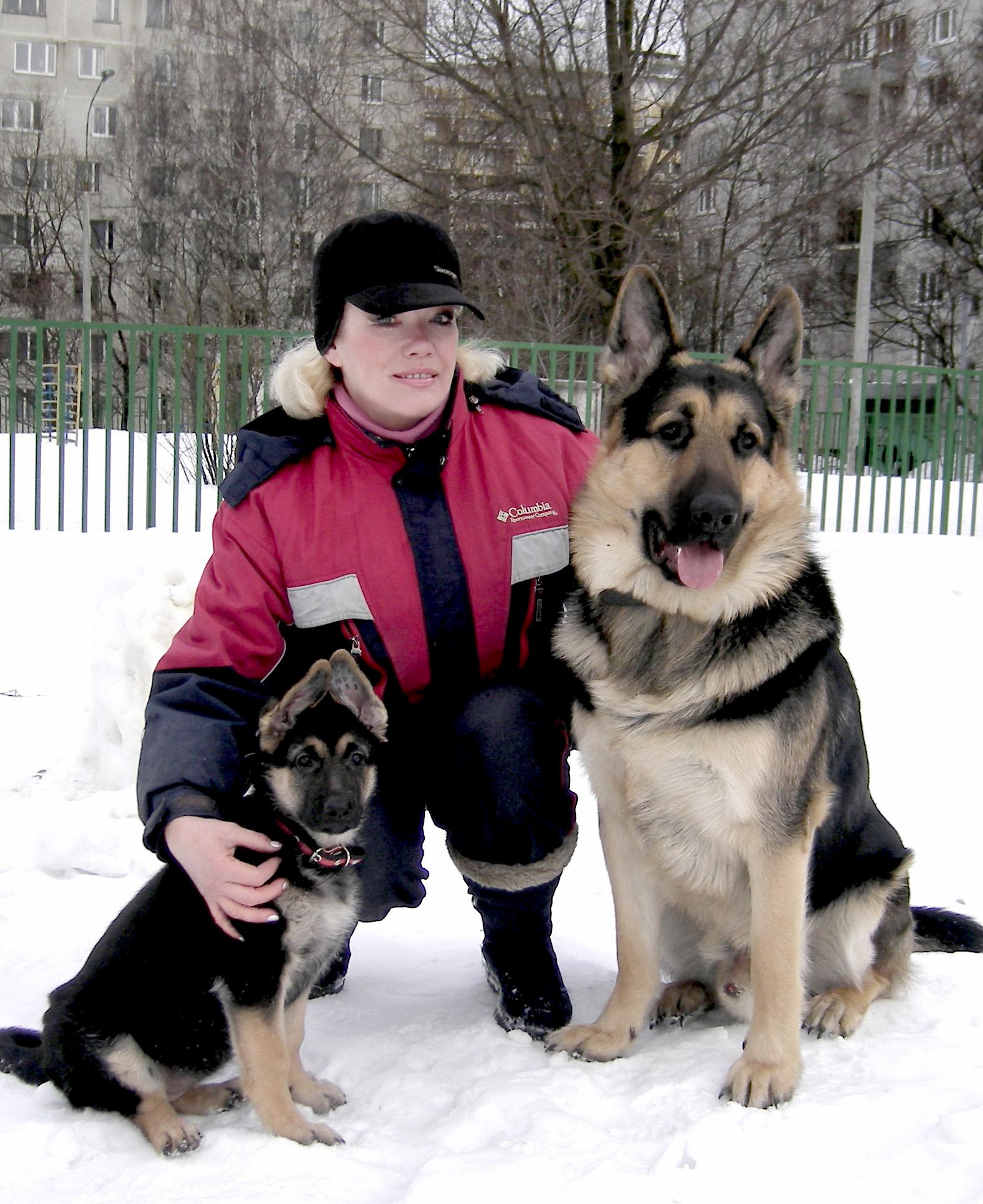 И тренировку служебных собак